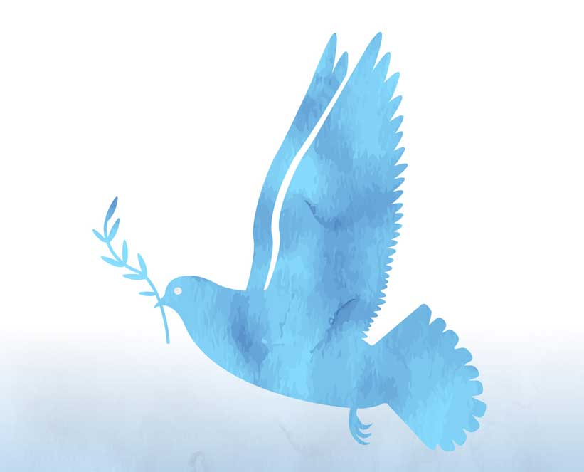 Peace Dove Holding Olive Branch