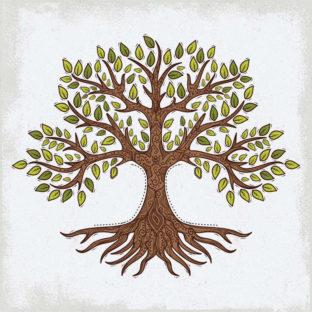 Hand Drawn Tree of Life