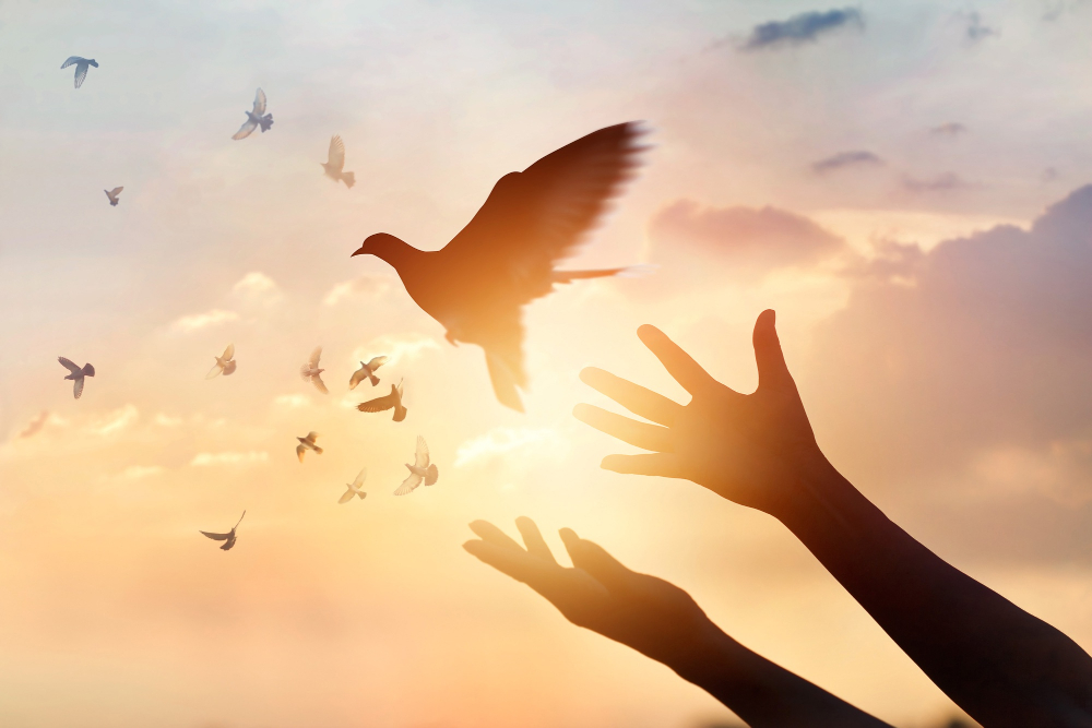 Peaceful Faith